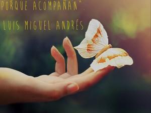 Cómo sanar a través de la imposición de manos. Luis Miguel Andrés.