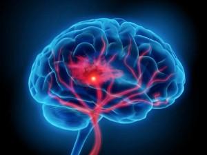 ¿Sabes cuantos tipos de inteligencia existen?