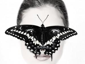 Tan fuerte como para coger una mariposa sin dañarla