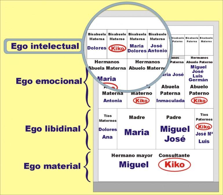 Cinco Puntos Para Empezar A Interpretar El árbol Genealógico Plano