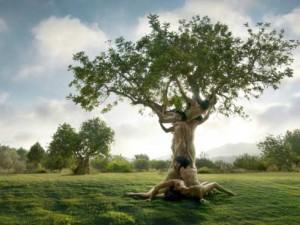 El nudo incestuoso nos impide salir al mundo