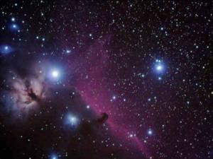 ¿Cuántos pueblos indígenas continúan aislados en este universo?