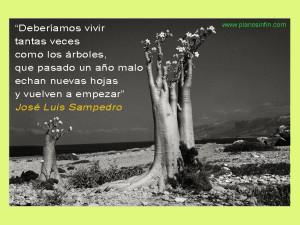 Jose Luis Sampedro, frases de sabiduría
