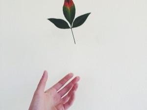 ¿Estás disponible para un nuevo amor? Di adiós a….