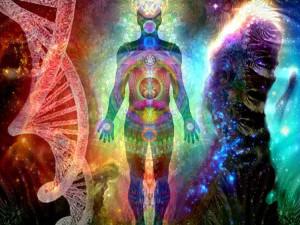 ¿Por qué el científico Bruce Lipton cree en la reencarnación?