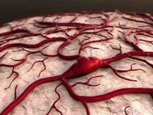 Sabemos que con el ejercicio el cerebro rejuvenece.