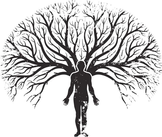 La Teoría De Los Campos Mórficos De Rupert Sheldrake Y El árbol