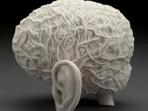 10 actividades que modifican tu cerebro