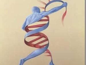 Transducción y epigenética. ¿Qué son estos dos campos de la ciencia?
