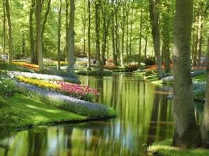Esa es mi pretensión, hacer ciudades jardín.
