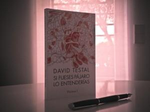 """David Testal: """"utilizamos a la sociedad para no afrontar la responsabilidad individual"""""""