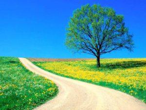 Reflexión, a modo de homenaje, sobre el último tránsito que todo humano está obligado a realizar.