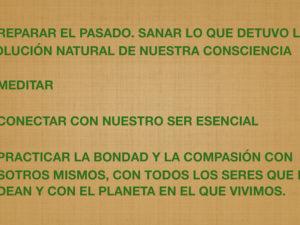 2.4. La consciencia