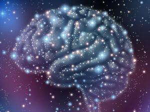 ¿Cuál es el sentido evolutivo?