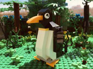 """Cinco consejos extraídos del libro """"un pingüino en la jungla"""""""
